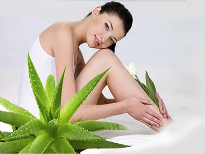 Muốn tắm trắng nhanh và hiệu quả thì đừng bỏ qua phương pháp tắm trắng toàn thân bằng nha đam