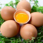 Da căng mướt mịn nhờ mặt nạ tắm trắng từ trứng gà