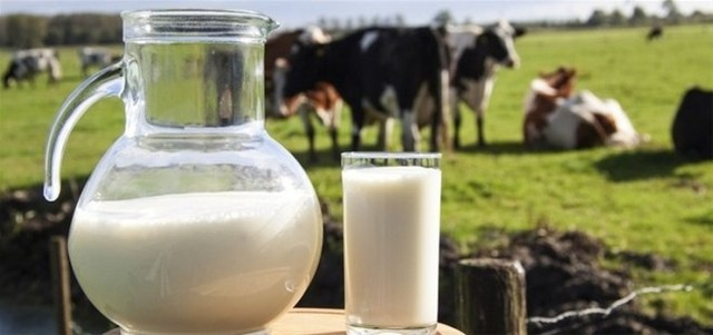 Tắm trắng bằng sữa bò tươi nguyên chất